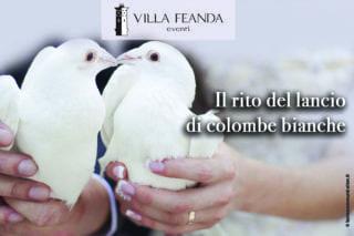 colombe bianche villa feanda